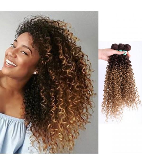 3 Bundles Ombre Kanekalon Braiding Hair Kinky Curly Hair