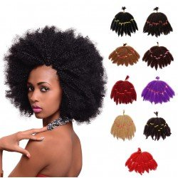 5 Packs Afro Kinky Curly Twist Braiding Hair