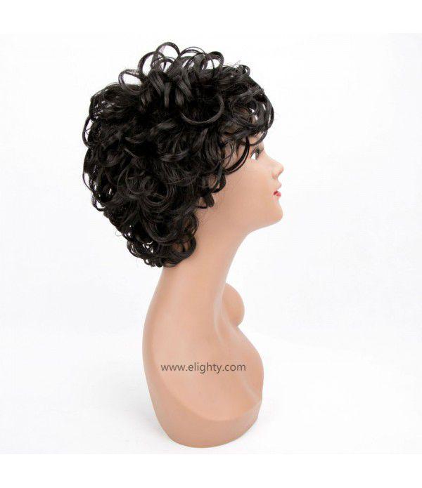 Charming Wigs New Fashion Women Short Full Hair Wig for Women Kanekalon Natural Hair Wigs (Color 1B)