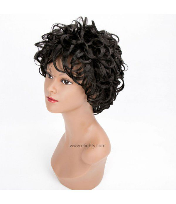 Charming Wigs New Fashion Women Short Full Hair Wig for Women Kanekalon Natural Hair Wigs (Color 1B)